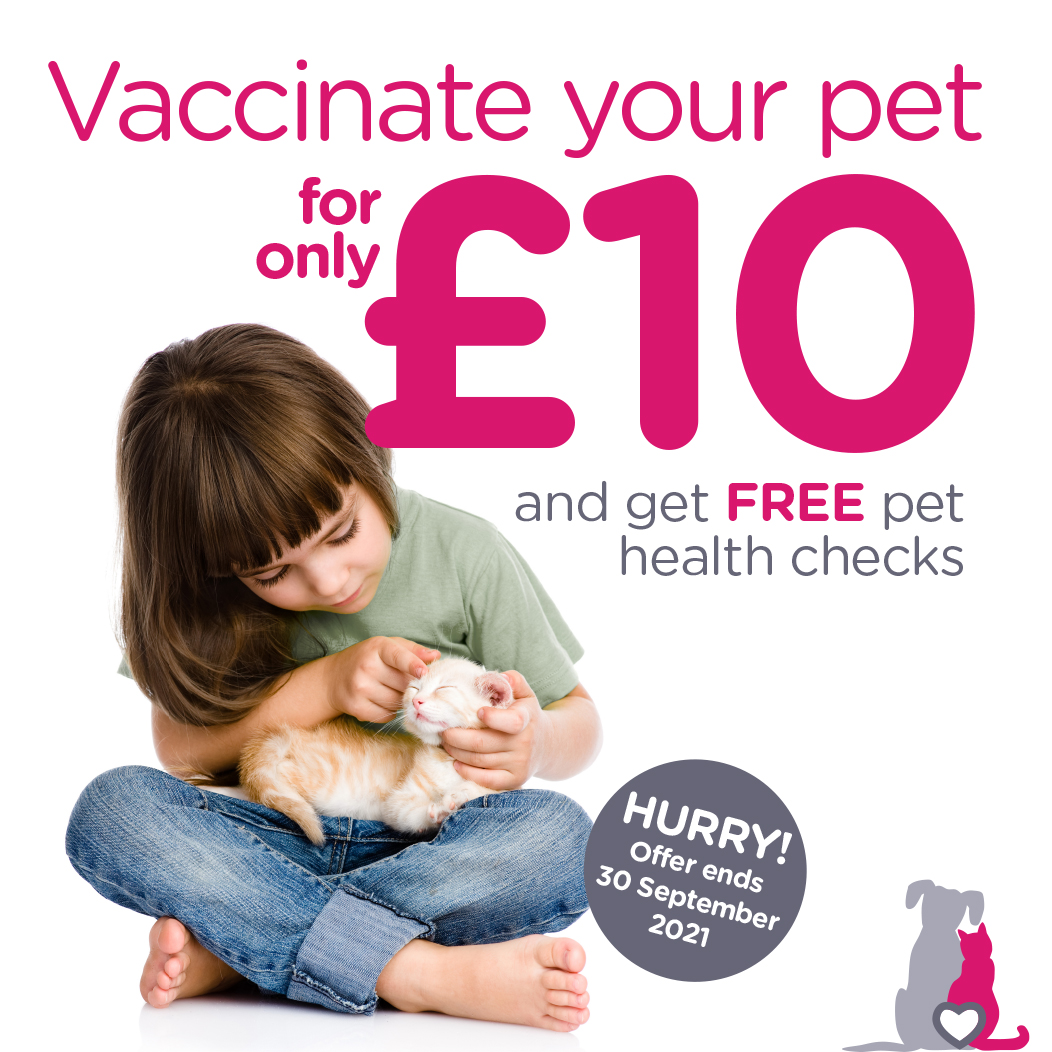 Special opening vaccination offer